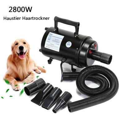 soffiatore cani professionale 2800w